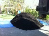 10 Yards Dyed Black Mulch